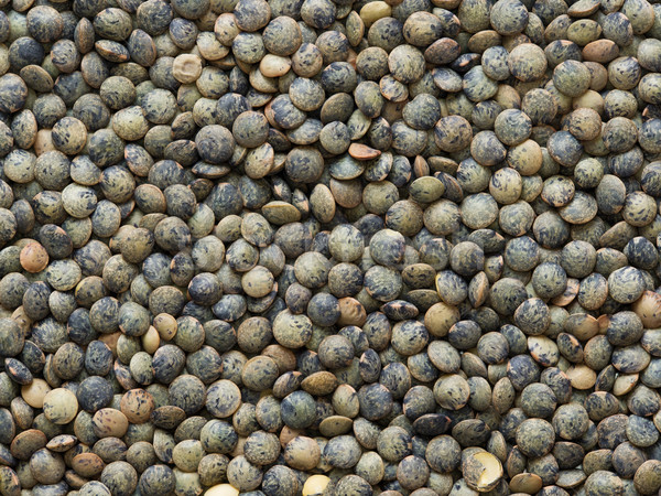 dried french green puy lentil food background Stock photo © zkruger