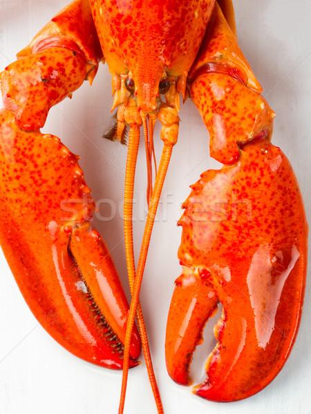 Rustiek gekookt gekookt Rood kreeft Stockfoto © zkruger