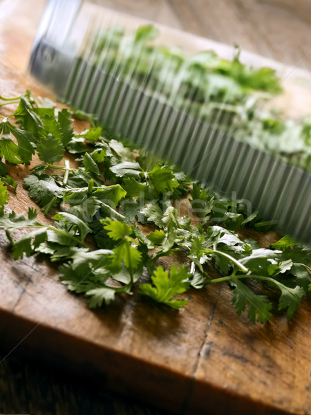 cutting coriander leaves Stock photo © zkruger