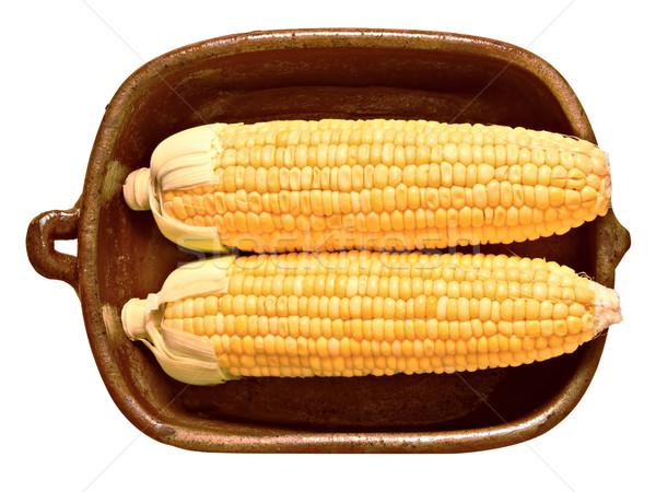 rustic golden raw uncooked corncob Stock photo © zkruger