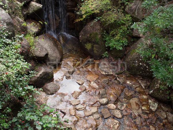 oriental japanese garden  Stock photo © zkruger