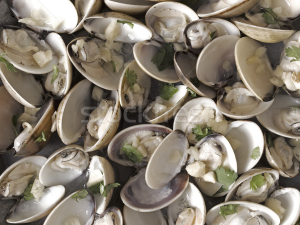 white clams in white wine sauce Stock photo © zkruger