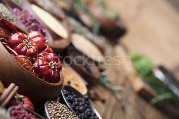 Temperos conjunto colorido diferente mesa de madeira Foto stock © zolnierek