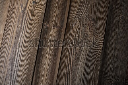 Textura marrón lugar logo tipografía Foto stock © zolnierek