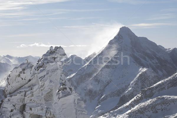 зима лыжах Альпы красивой мнение солнце Сток-фото © zolnierek