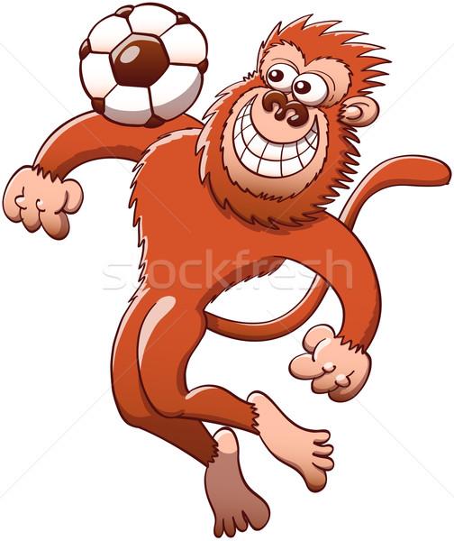Serin maymun futbol topu göğüs kahverengi atlama Stok fotoğraf © zooco