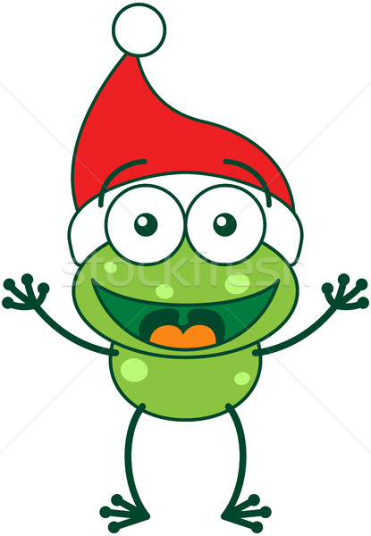 Cute frog wearing Santa hat and celebrating Christmas Stock photo © zooco