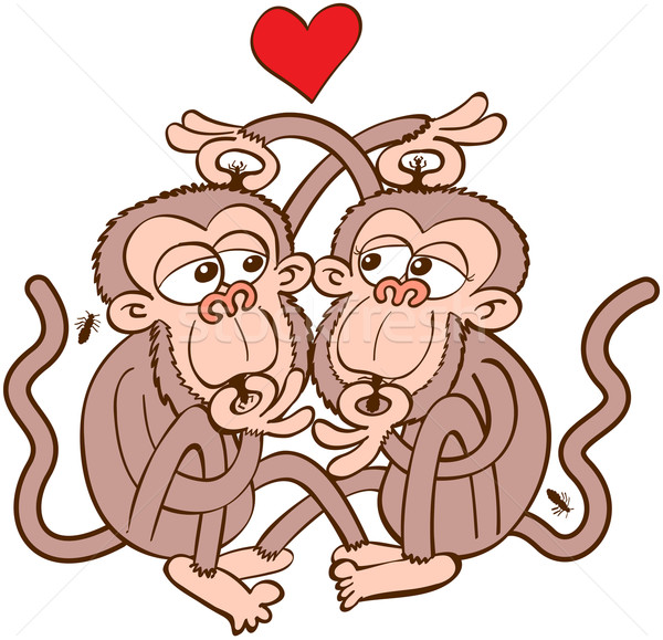 Couple of monkeys in love delousing each other Stock photo © zooco