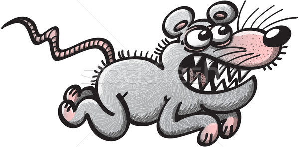 Ugly rat running Stock photo © zooco