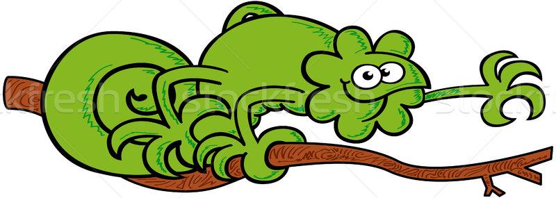 Zielone Chameleon spaceru oddziału powitanie nice Zdjęcia stock © zooco