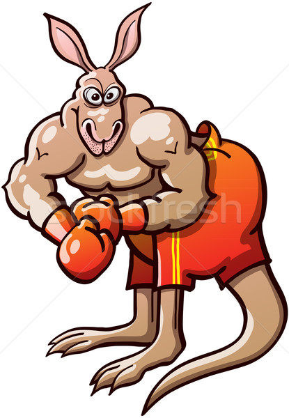 Muscled Boxing Kangaroo Stock photo © zooco