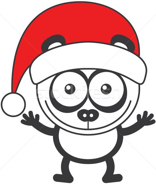 Panda medve visel mikulás kalap ünnepel Stock fotó © zooco
