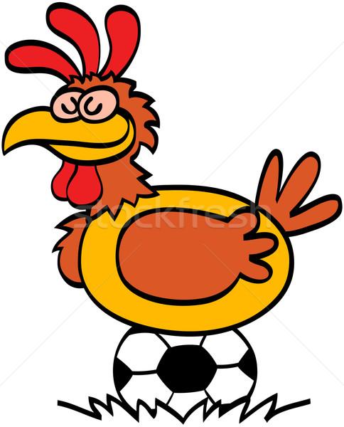 Gallina balón de fútbol agradable soñoliento sonriendo Foto stock © zooco
