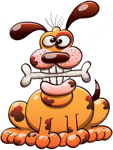 Boldog kutya rág csont mosolyog ül Stock fotó © zooco