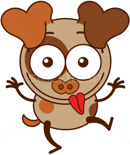 茶色の犬 面白い 顔 かわいい ストックフォト © zooco