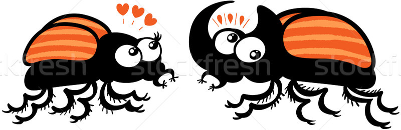Couple of rhinoceros beetles shyly falling in love Stock photo © zooco