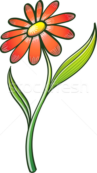 ストックフォト: 美しい · オレンジ · 花 · エレガントな · 長い · 幹