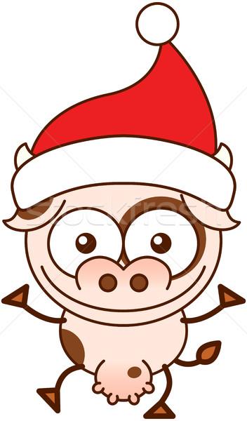 Cute krowy Święty mikołaj hat Zdjęcia stock © zooco