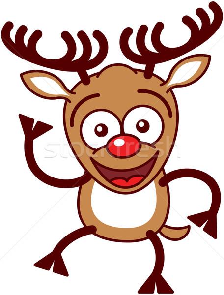 Noel ren geyiği merhaba güzel kahverengi Stok fotoğraf © zooco