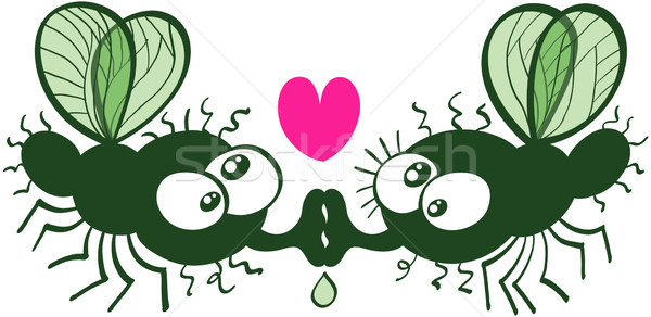 Ugly flies kissing and falling in love Stock photo © zooco