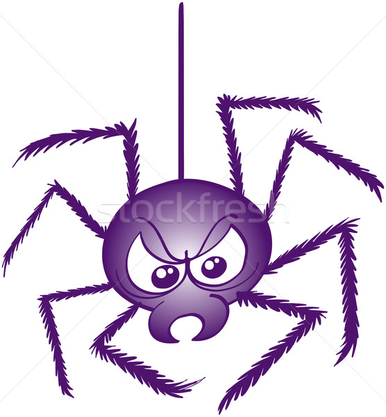 Scaring spider in angry mood Stock photo © zooco