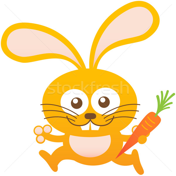 Nice baby rabbit smiling, running and holding a carrot Stock photo © zooco