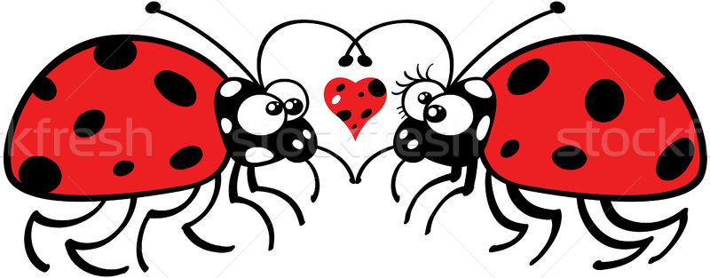 Ladybugs tenderly falling in love Stock photo © zooco