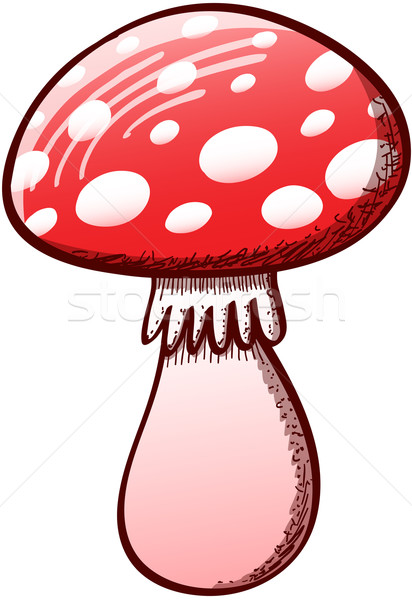 Red mushroom with white spots Stock photo © zooco