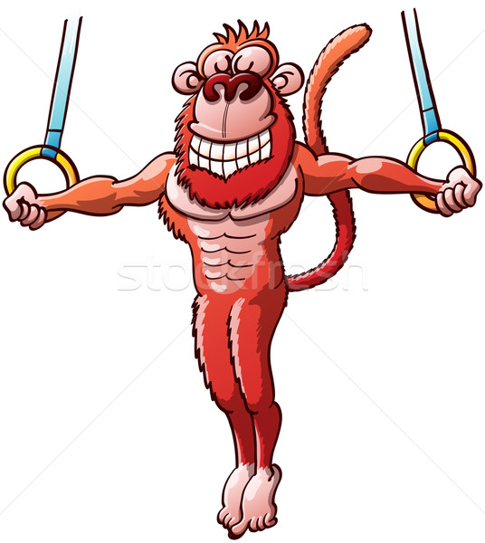 Nice Monkey Executing Stunts on the Flying Rings  Stock photo © zooco