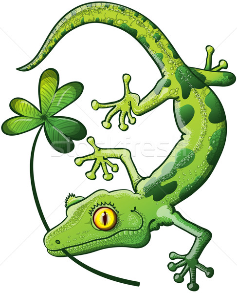 Saint jour gecko timide vert souriant Photo stock © zooco