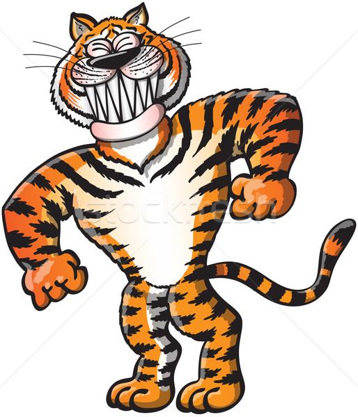 Szép tigris pózol vigyorog hideg fülek Stock fotó © zooco