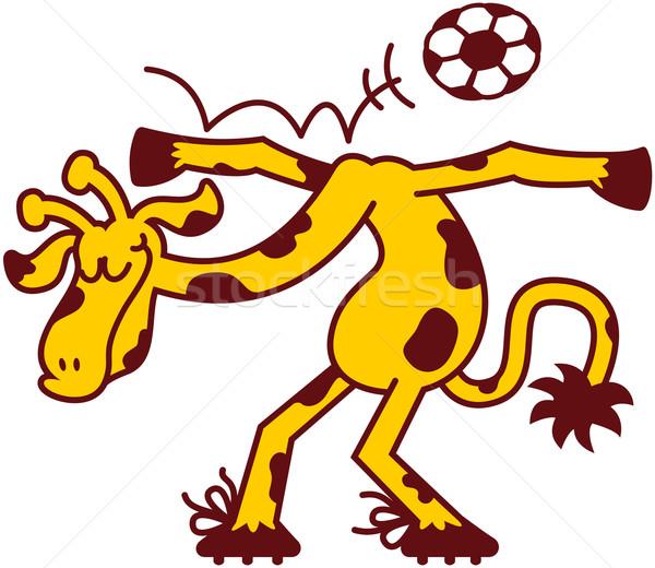 Szép zsiráf játszik futball hideg előad Stock fotó © zooco