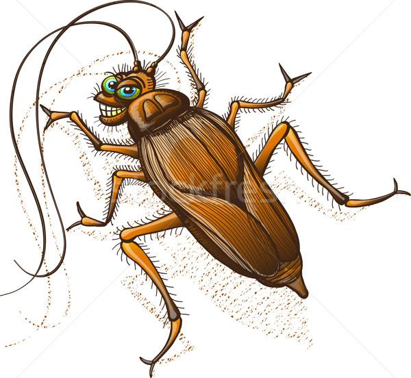 Hamamböceği gülen iğrenç kahverengi uzun Stok fotoğraf © zooco