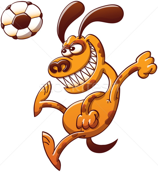 Brave dog heading a soccer ball Stock photo © zooco