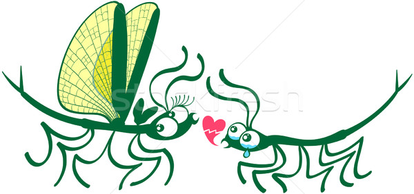 Stick insects shyly falling in love Stock photo © zooco