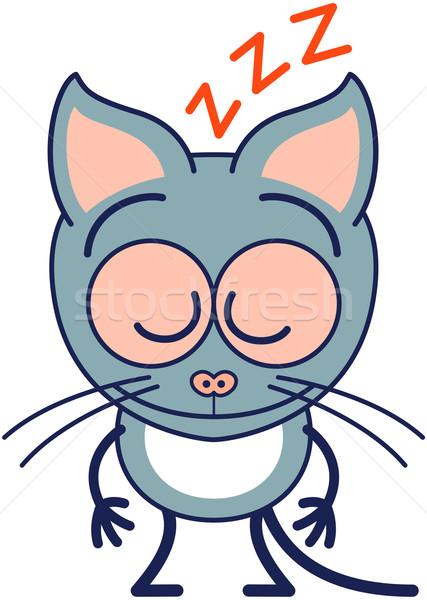 Aranyos szürke macska alszik minimalista stílus fülek Stock fotó © zooco