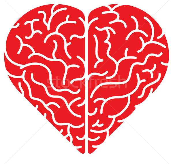 Rojo Cartoon corazón cerebro superior Foto stock © zooco