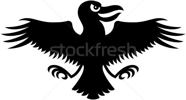 Preto corvo abrir asas sorrir Foto stock © zooco