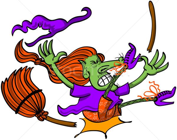 Szerencsétlen boszorkány baleset lovaglás seprű szegény Stock fotó © zooco