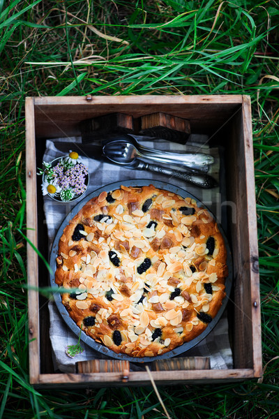 mulberry white chocolate almond cake.outdoor photo Stock photo © zoryanchik