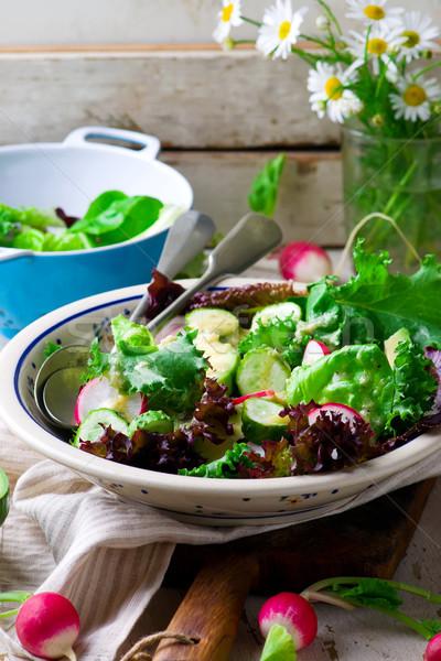Foto d'archivio: Estate · insalata · rafano · medicazione · stile · pesce