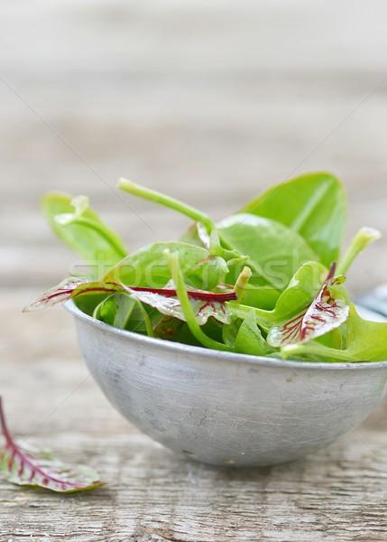 Frescos orgánico hojas verde mesa de madera hoja Foto stock © zoryanchik