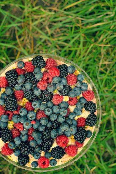 trifle Stock photo © zoryanchik