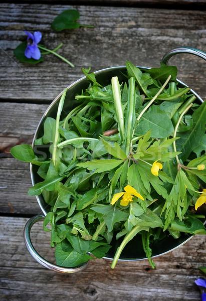 wild dandelion leaf Stock photo © zoryanchik