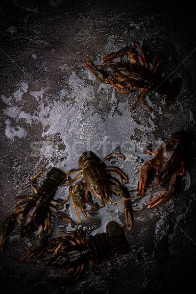 raw crayfish on the stone background.selective  focus Stock photo © zoryanchik