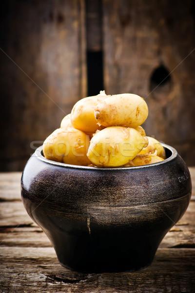 Fiatal organikus krumpli üst stílus rusztikus Stock fotó © zoryanchik
