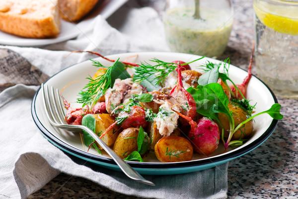 roast radish new potato peppered mackerel salad Stock photo © zoryanchik