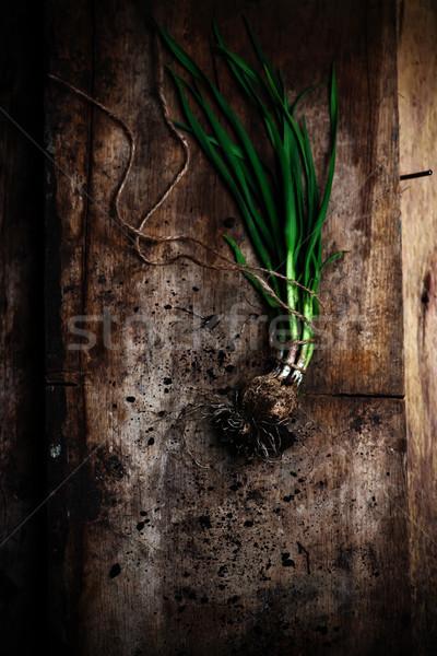 Fresco verde alho mesa de madeira estilo rústico Foto stock © zoryanchik