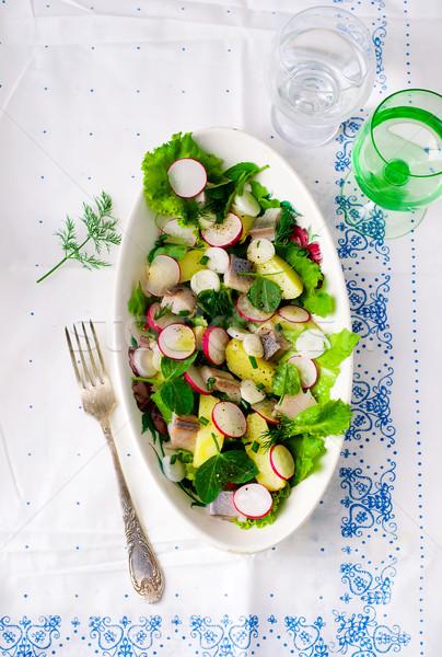 Stock fotó: Nyár · saláta · kert · retek · egészséges · étel · szelektív · fókusz