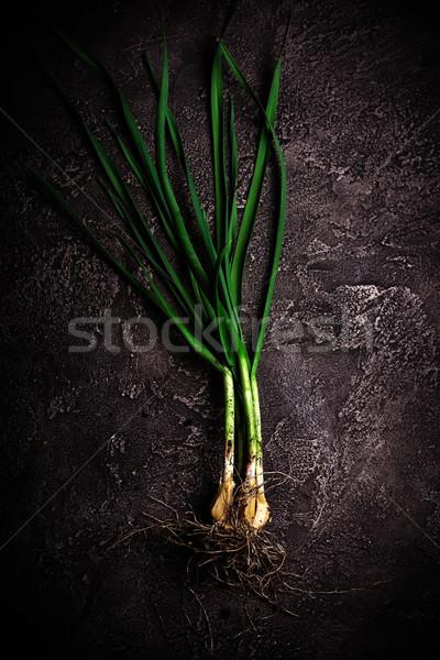 fresh green garlic   Stock photo © zoryanchik